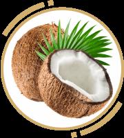 1 zah coconut oil